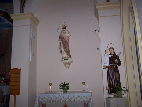 The Franciscan Missionary Sisters of the Sacred Heart
